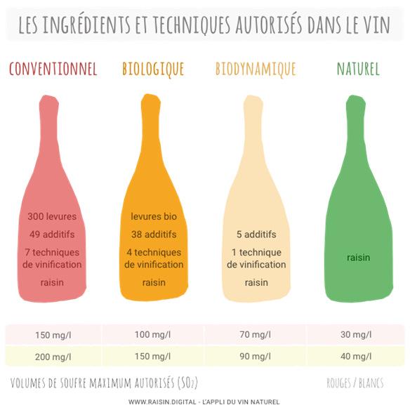 Ingrédients et techniques utilisées dans le vin